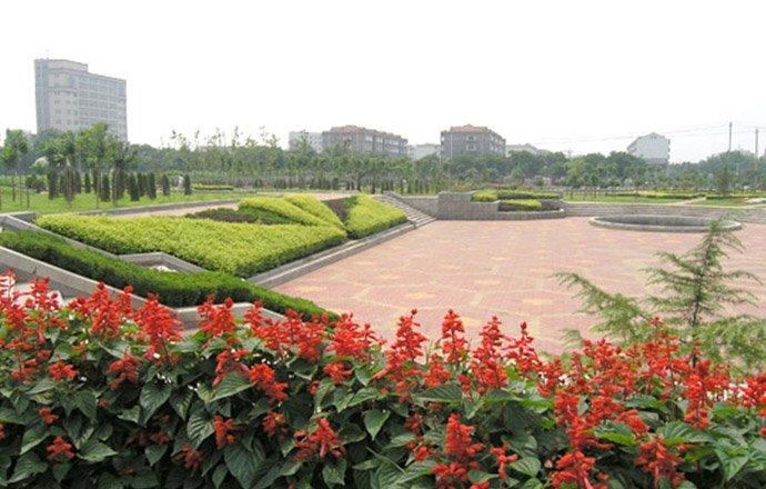 淄川般阳河绿化工程