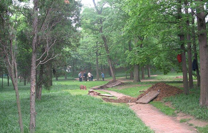 天水市中山公园绿化工程